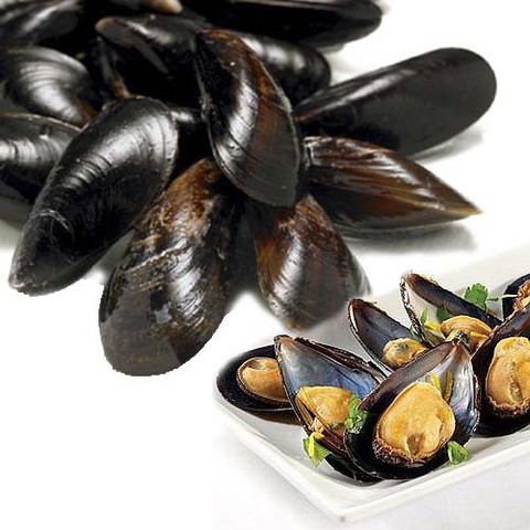 https://static-eu.insales.ru/images/products/1/2536/89369064/mussels_in_shells.jpg