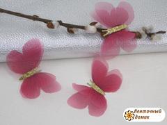 Бабочки шифоновые с золотым тельцем вишневые  №4