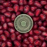 Сплин / Гранатовый Альбом (CD)