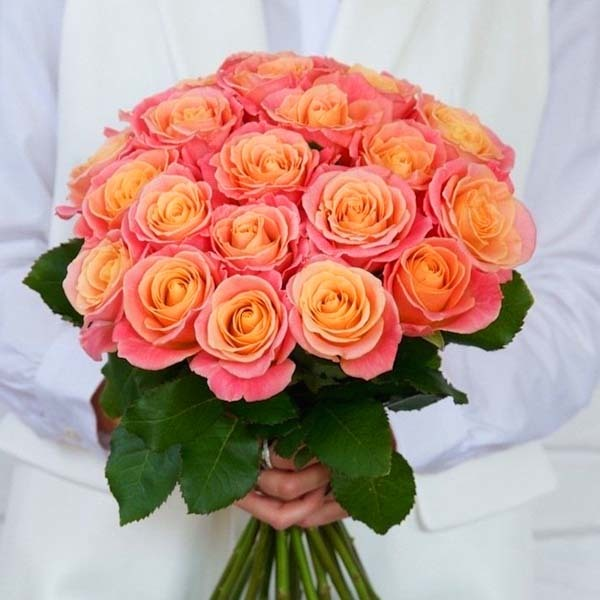Букет 25 персиковых роз Мисс Пигги