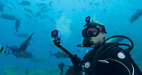 Magenta Dive Filter for Dive Housing - Пурпурный фильтр для дайв бокса