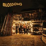Blossoms / Blossoms (LP)