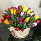 Тюльпаны в подарочной коробке