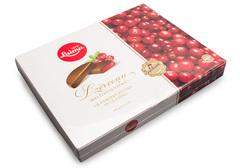 Клюквенные дольки в шоколадной глазури, 190г