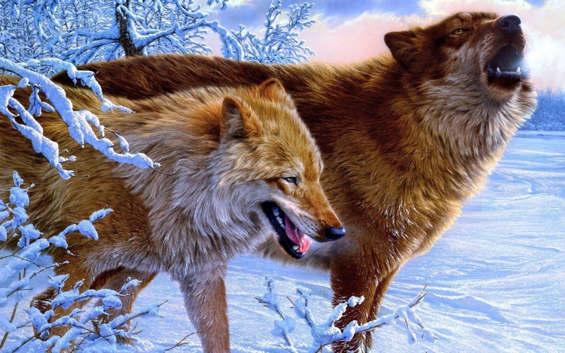 Картина раскраска по номерам 40x50 Два волка зимой– купить ...