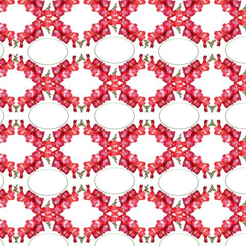 Орнамент красные гладиолусы на белом фоне.