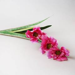 Букет лилий болотных, фиолетовый, 29291