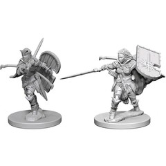 Pathfinder Deep Cuts Unpainted Miniatures - Human Female Paladin