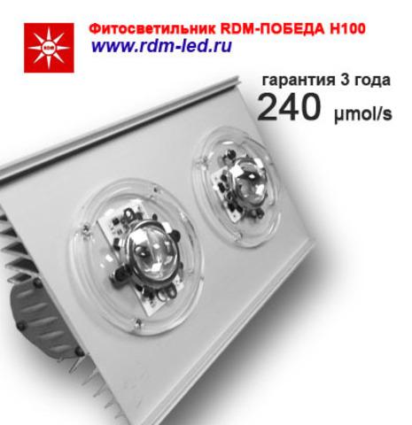 Партия 10 штук / Фитооблучатель RDM-ПОБЕДА Н100 ГИБРИД