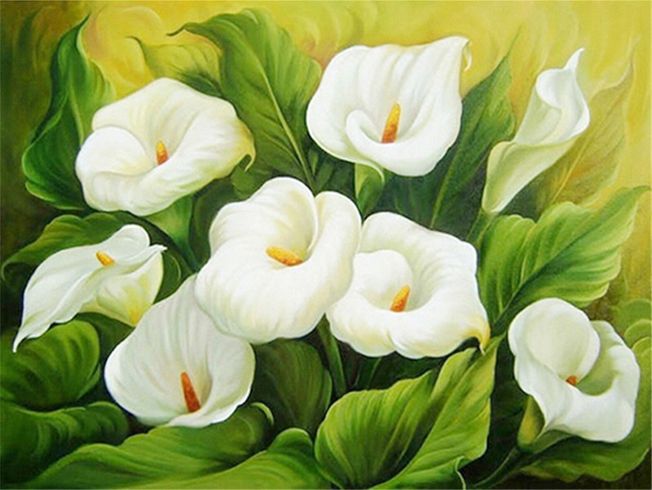 Картина раскраска по номерам 30x40 Белые каллы– купить в ...