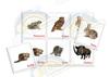 Лесные животные. Заяц и другие. Развивающие пособия на липучках Frenchoponcho (Френчопончо)