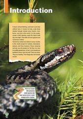 Venomous Snakes. Reader. Книга для чтения