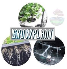 Grow Plant