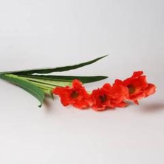 Букет лилий болотных (красный) 29291