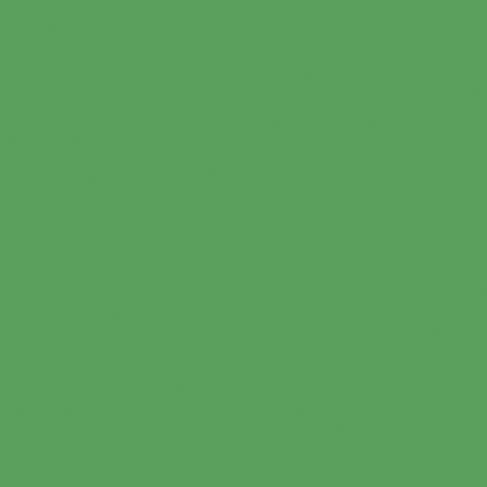 FST 2.72х11 Chromagreen 1010