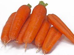 Тангерина F1 семена моркови, (Takii / Таки)
