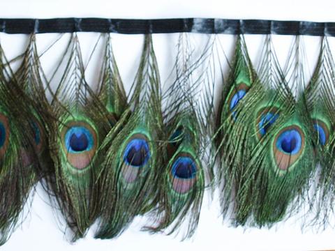 Тесьма  из перьев  павлина h-17-18 см.,  (выбрать цвет)