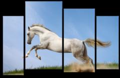 """Модульная картина """"Лошадь в прыжке"""""""