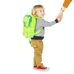рюкзак для малышей Dino