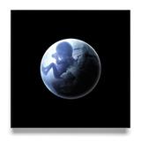 Максим Фадеев / Танцуй на битом стекле + Нега + Триумф (Coloured Vinyl)(3LP)