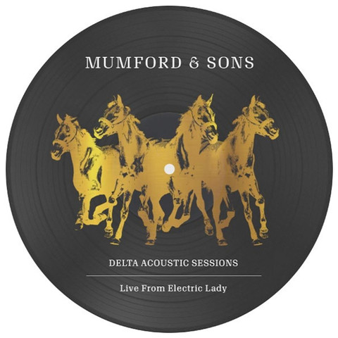 Mumford & Sons ‎/ Delta Acoustic Sessions (Picture Disc) (10