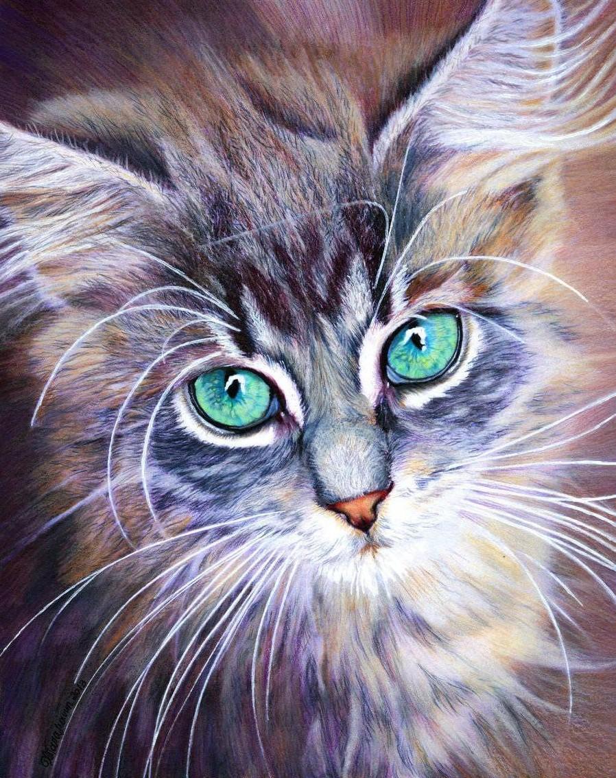 урок рисования акрилом коты только подобрать мебель