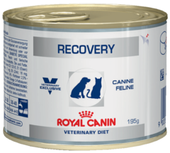 Royal Canin Recovery Диета для собак и кошек в период анорексии, выздоровления