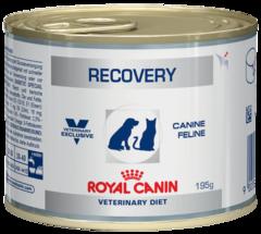 Royal Canin Recovery Диета для собак и кошек в период анорексии, выздоровления