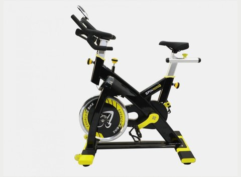 American Motion Fitness 8900S