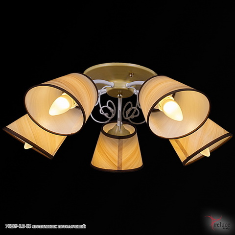 70209-0.3-05 светильник потолочный