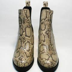 Ботинки под змеиную кожу женские демисезонные Kluchini 13065 k465 Snake.