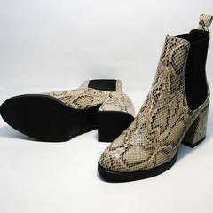 Ботинки на толстой подошве женские демисезонные Kluchini 13065 k465 Snake.