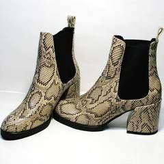 Челси на каблуке женские демисезонные Kluchini 13065 k465 Snake.