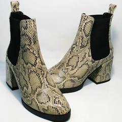 Ботинки челси женские на каблуке демисезонные Kluchini 13065 k465 Snake.