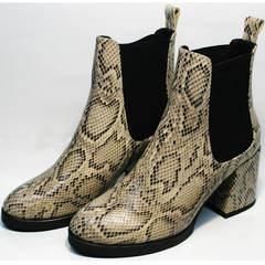 Женские осенние ботинки челси Kluchini 13065 k465 Snake.