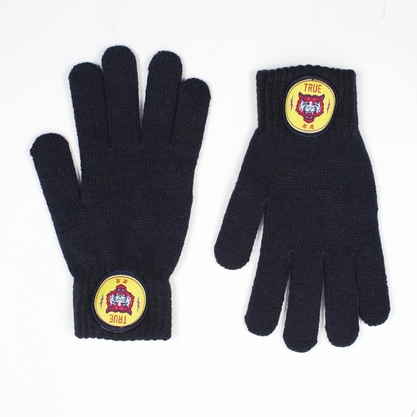 Перчатки TRUESPIN Angry Peanut Touchgloves NAVY