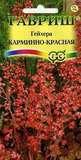 Гейхера Карминно-красная