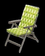 Кресло регулируемое Forester со съемным матрасом