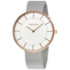 Женские часы Skagen SKW2583