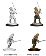 Pathfinder Battles Deep Cuts Unpainted Miniatures - Male Human Barbarian
