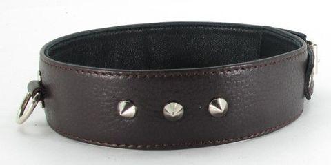 Ошейник с кольцом коричневый увеличенного размера XL 55033ars