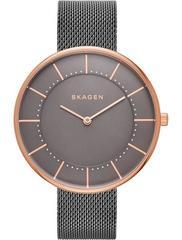 Женские часы Skagen SKW2584