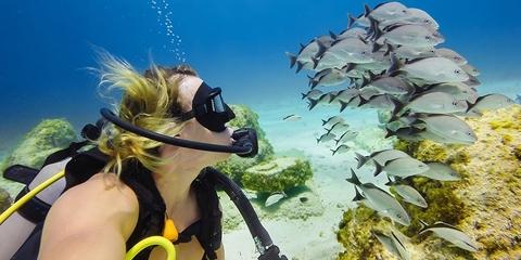 Фильтр для подводной съемки GoPro Tropical/Blue Water Dive Filter (AAHDR-001) пример фото