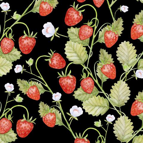 Seamless texture Summer strawberries, juicy berries on a black background.