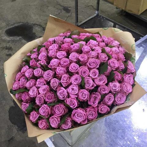 Букет 101 сиреневая роза Deep Water