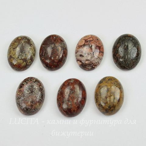 Кабошон овальный Яшма Шкура леопарда, 20х15х6,5 мм