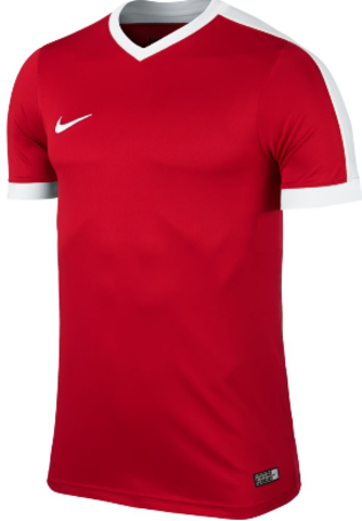 Футболка Nike Striker IV 725892 | 725974 (657)