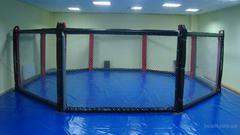 Восьмиугольный ринг, диаметр 8м без помоста.