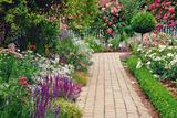 Как красиво сочетать цветы и оформить цветник на клумбе