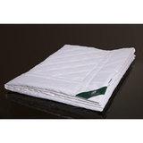 Одеяло всесезонное 200х220 Bamboo, артикул GB-51208, производитель - Anna Flaum